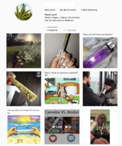 Buy Weed Instagram Account with Real Followers and Engagements. See our 5 star Reviews on our Google Business Page. #1 Trusted Instagram Account Seller