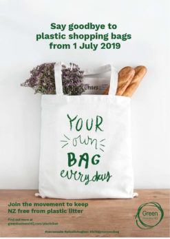Plastic-Bag-Ban-Poster-version2-green-business-HQ_A3-A4 Posters