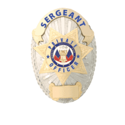Private Security Sergeant Badge