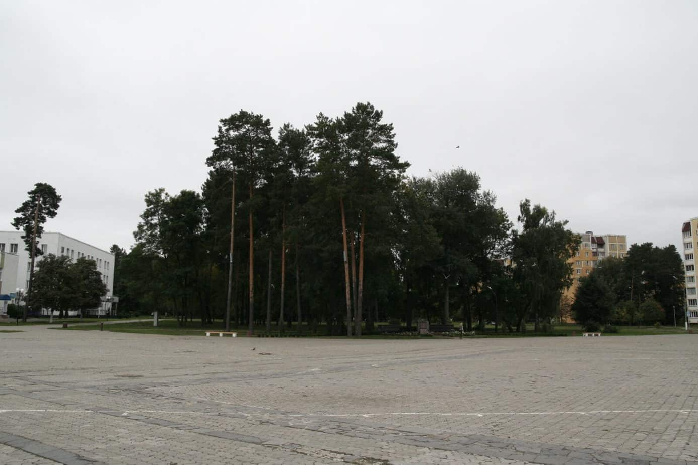 _MG_1269