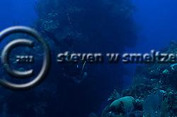 Big Tunnels, Grand Cayman (StevenWSmeltzer.com)