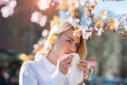 Neue Studie: Medizinalcannabis und Allergien