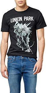 Libros de brujería antiguos pdf-Camisetas de Linkin park