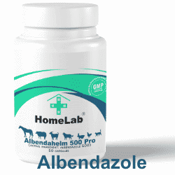 Best seller Albendahelm albendazole 500 mg vet prescriptions