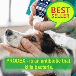 PRODEX - ciprodex drops for ears 250-250-online shop