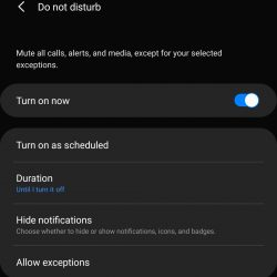 How to enable Do not disturb on Android 10 device.