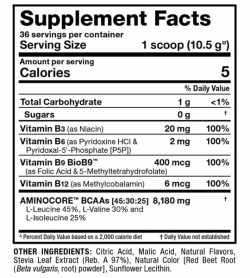 Supplement facts and ingredients panel of Allmax Nutrition Aminocore Natural for serving size of 1 scoop (10.5 g) with 36 servings per container