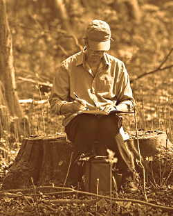 A gentleman sitting on a dead tree stump writing in a book.