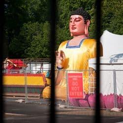 Siamo troppo vicini alle sbarre della recinzione e queste sono diventate il soggetto principale della fotografia.