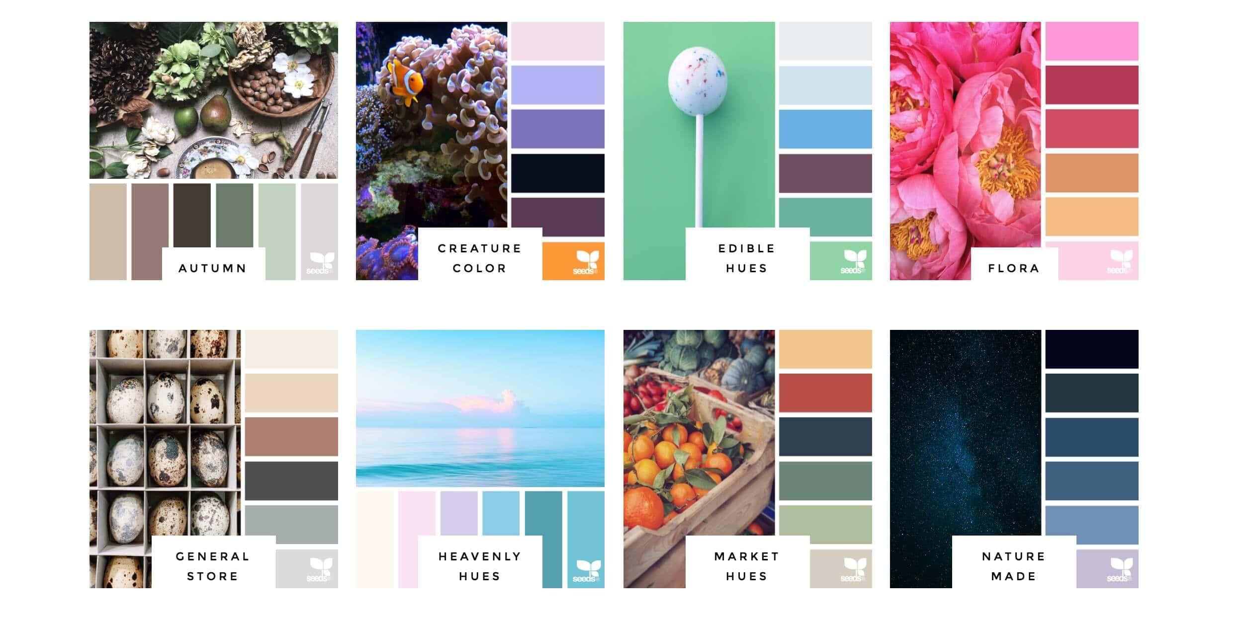 Design seeds color inspiration