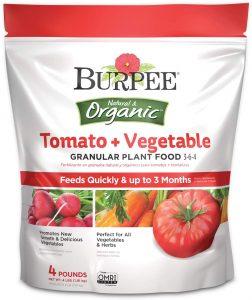 Burpee Organic Tomato