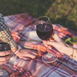 due persone bevono vino in calici sull'erba durante un picnic