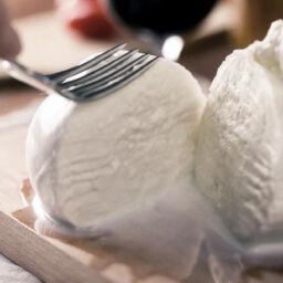 mozzarella di bufala contenente lattosio