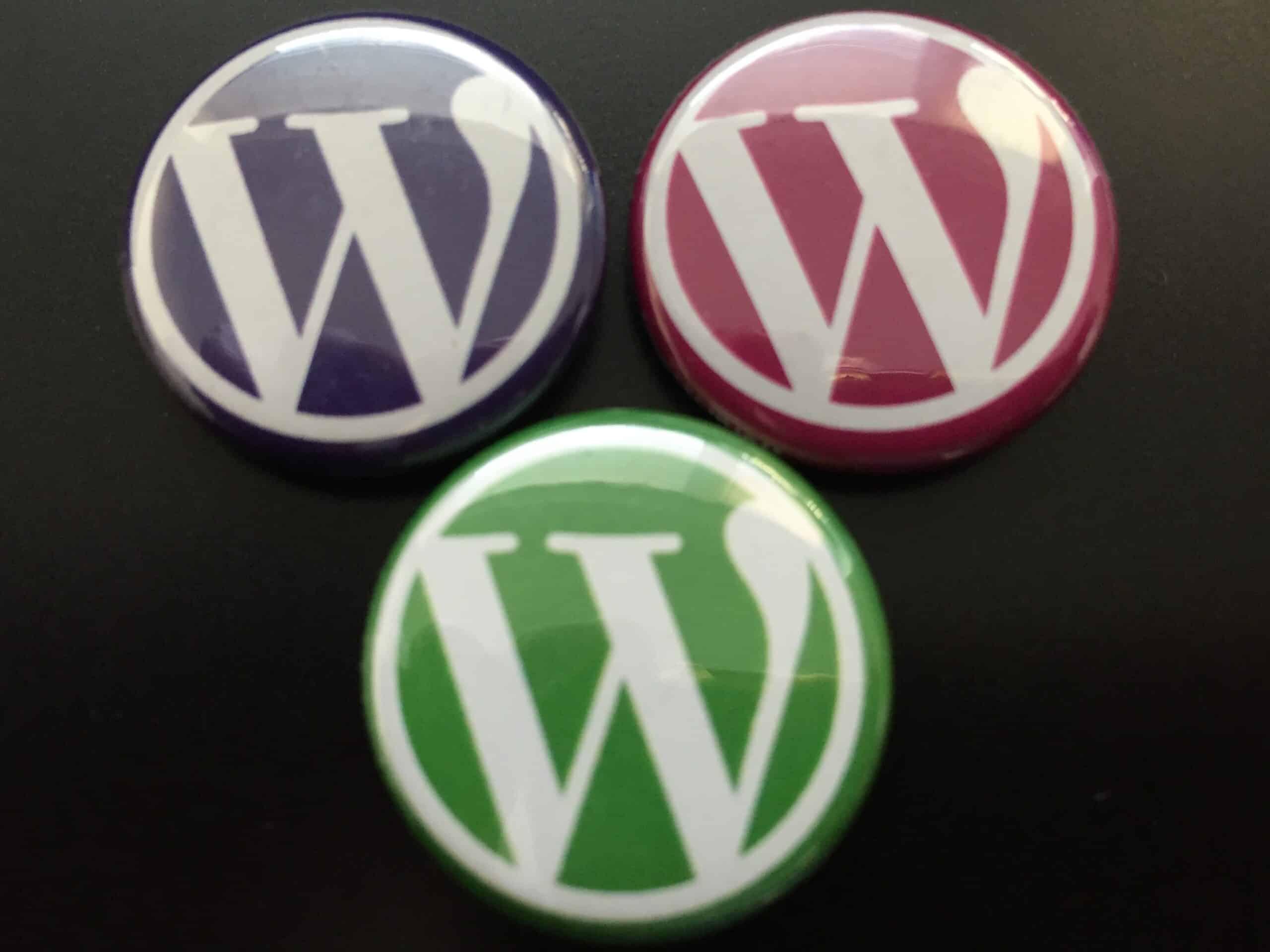 wordcamp london 2017 Wordpress websites Blue Dolphin Business Development Peterborough Website Design