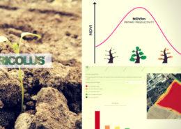 Indici-di-vegetazione-ndvi-e-ndmi