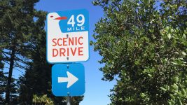 Image: Sign for the 49 Mile Scenic Drive