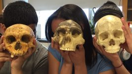 Image: three students holding up three skulls from the evolution of humans, right in front of their own heads