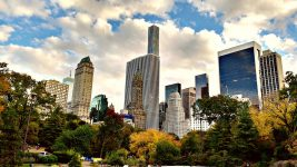 Image: New York City Skyline Above the Urban Forest of Central Park