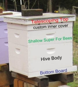 Understanding all the parts of a beehive is important for new beekeepers.