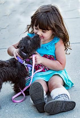 enfant et animaux