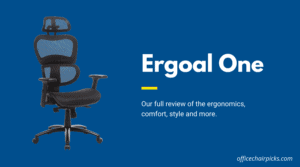 Ergoal One Review