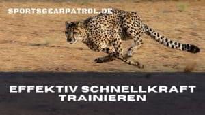 Bild Schnellkraft Trainieren