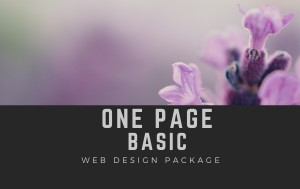 One page website image