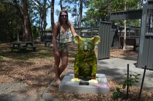 Koala Hospital Port Macquierie