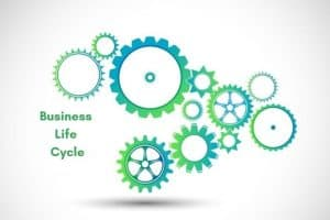 Business-Life-Cycle