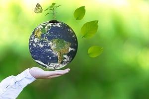 Lösemittel schaden Ihrer Gesundheit und der Umwelt. Dipp zum Bau weiß, wie sie Ihren Holzboden lösemittelfrei pflegen.
