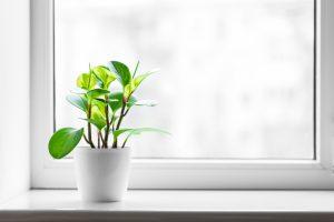 Planen Sie Ihre Fensterbank mit Tipp zum Bau.