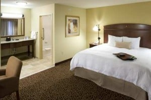 Hampton_Inn_and_Suites_Rochester-North__kingsuite_large