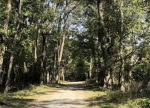 campgrounds near moline, il