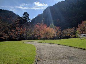 秋の日帰り旅行: 奈良県 みたらい渓谷