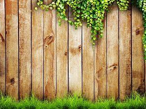 Tipp zum Bau informiert Sie über den Terrassen Sichtschutz.