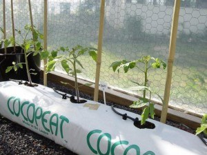 Water treatment Hydroponic growing