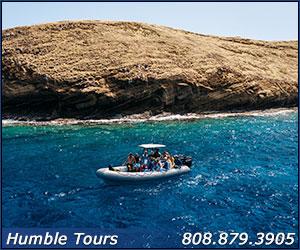 humble molokini tours