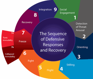 resilience-sequence