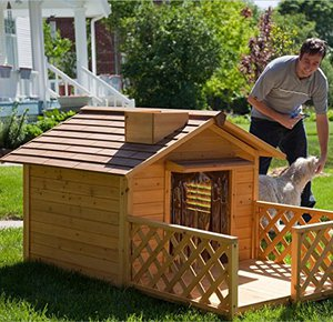 dog houses for big dogs