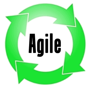 Portfolio Management and Agile Programming
