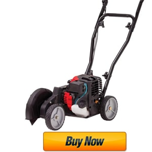 lawn edger reviews consumer reports