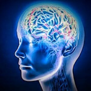 Memory cells memory and brain supplements