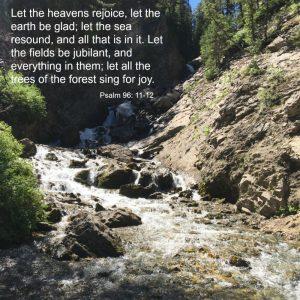 Psalm 96:11-12