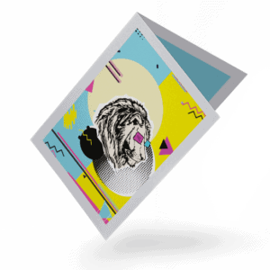 projekt graficzny katalogu bookletu