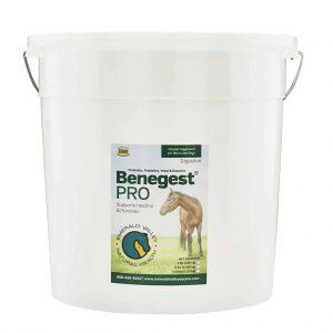 Benegest Pro 11.5lb Bucket