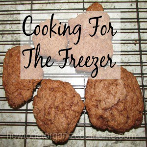 Freezer Cooking For the Holidays