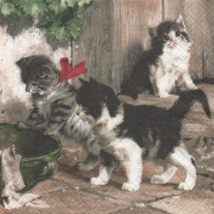 serviette papier 3 chatons