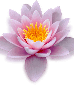 Guided Meditation Audio