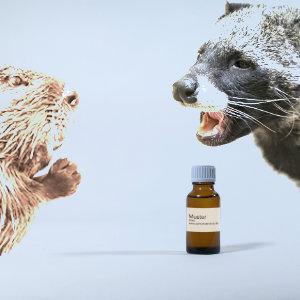 Basis Animalisch Riechstoff