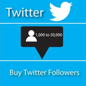 Buy Twitter Followers